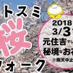 3/31(土)モトスミ桜ウォークフェスタ
