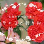 武蔵小杉周辺で選ぶ、母の日の贈り物2018