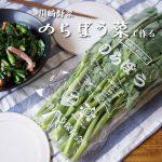 川崎野菜「のらぼう菜」で作る、春レシピ