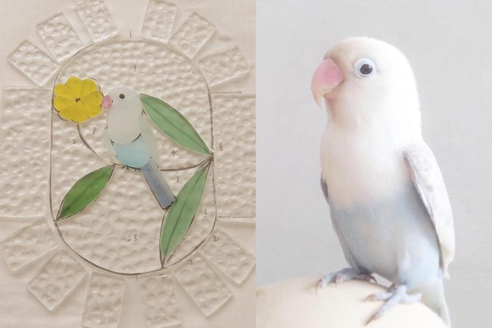 Loqat Birdwatching展